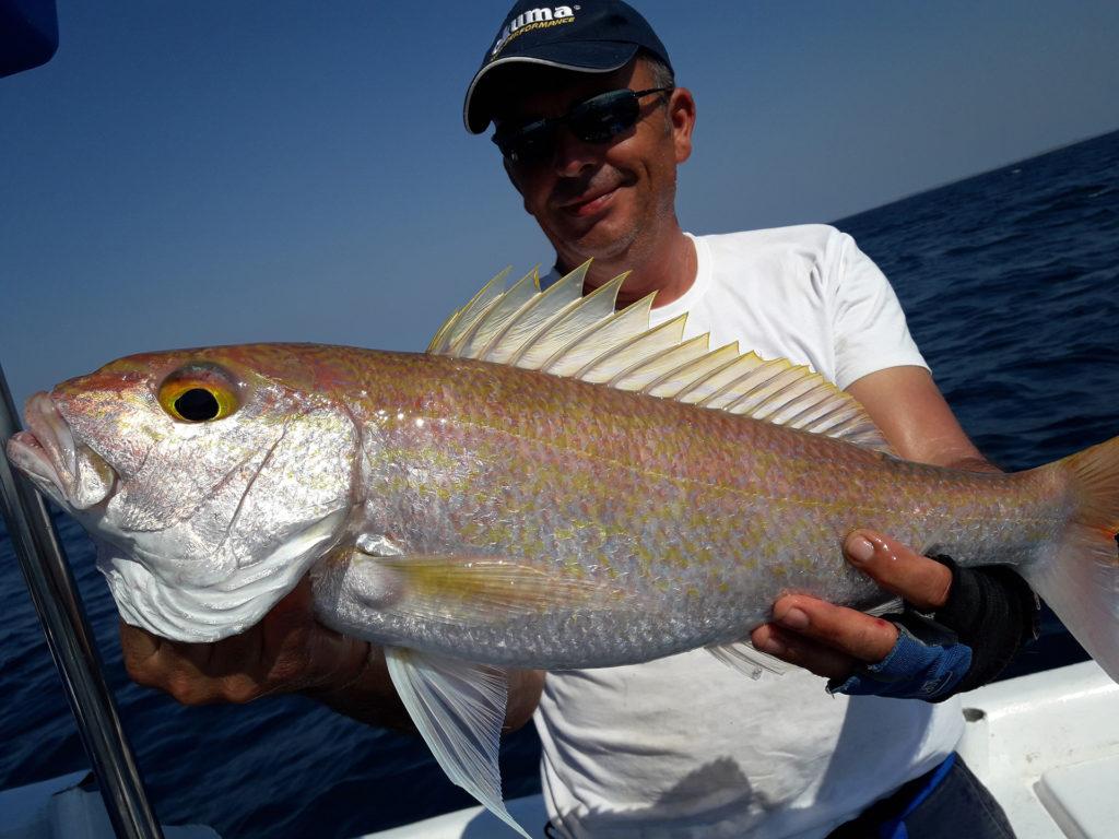beau-poisson-exotique