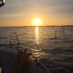 Actualités guide de pêche : Première sortie de l'année pour une session pêche aux leurres
